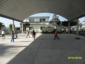 quintana117.jpg